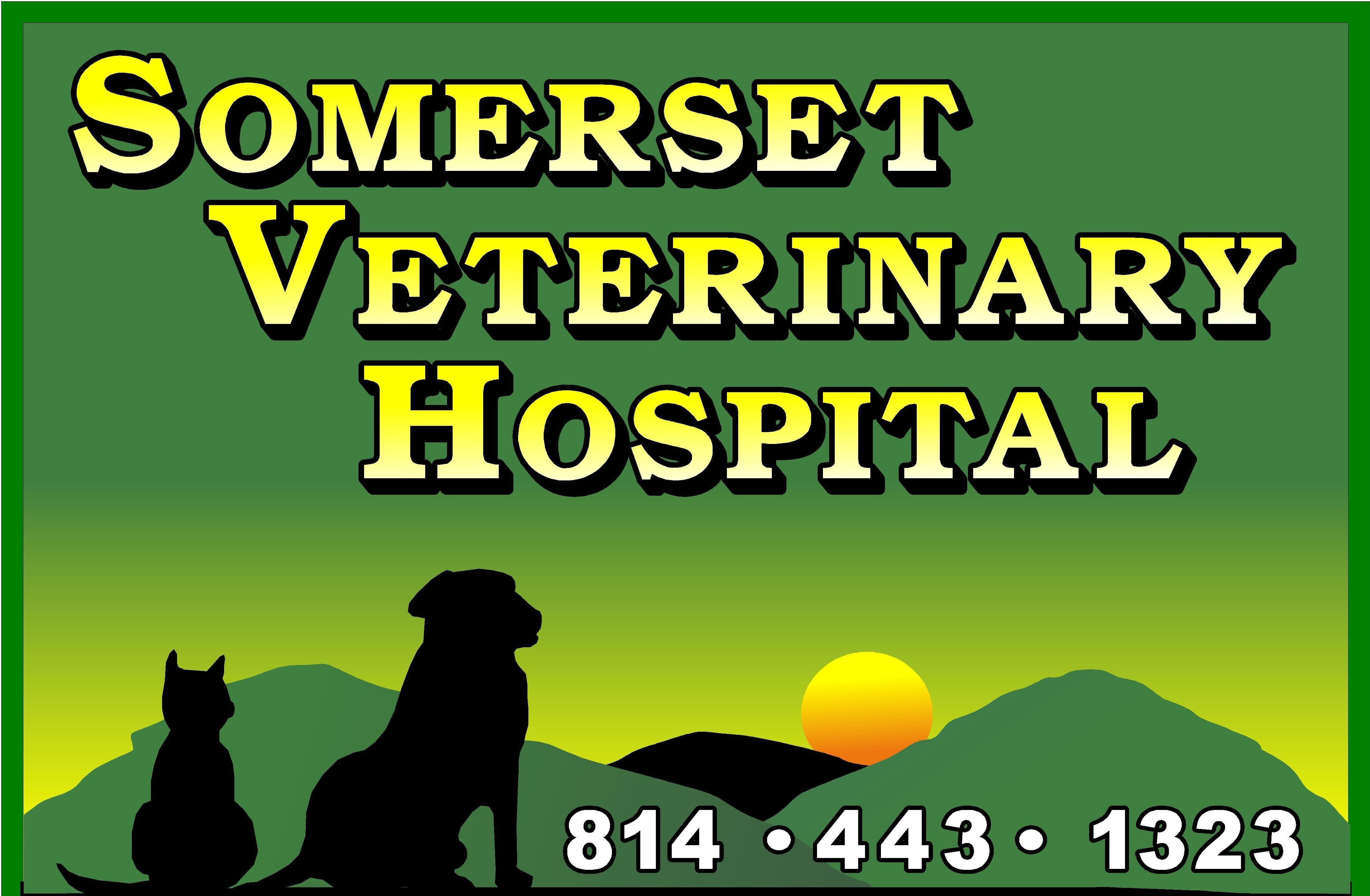 Somerset Veterinary Hospital - Veterinarian in Somerset, PA